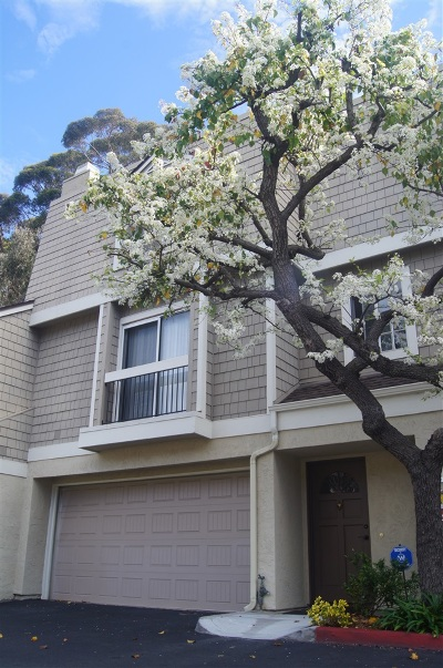San Diego CA Attached For Sale: $559,900