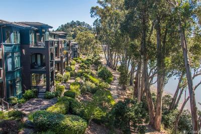Marin County Condo/Townhouse For Sale: 66 De Silva Island Dr
