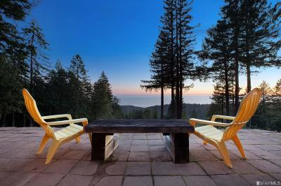 Sonoma County Single Family Home For Sale: 31523 Seaview Rd