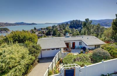 Marin County Single Family Home For Sale: 111 Inez Pl