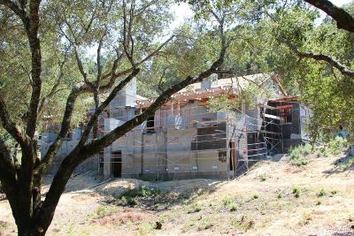 Sonoma County Single Family Home For Sale: 1240 Mayacama Club Drive #401
