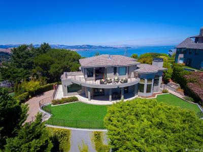 Marin County Single Family Home For Sale: 19 Place Moulin