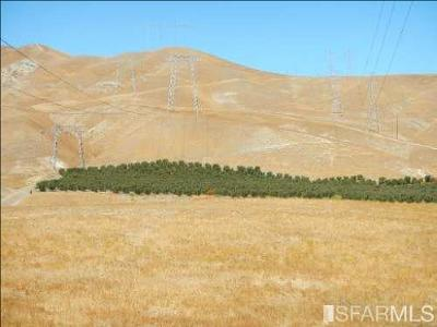 Residential Lots & Land For Sale: 8300 Del Puerto Canyon Rd
