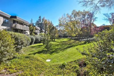 San Bruno Condo/Townhouse For Sale: 1141 Shelter Creek Ln