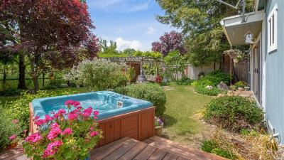 Sonoma County Single Family Home For Sale: 20553 Birch Rd