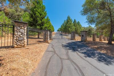Amador County Single Family Home For Sale: 13380 Pioneer Dr