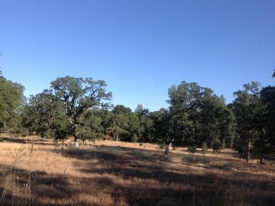 Palo Cedro Residential Lots & Land For Sale: Tudor Oaks Dr Parcel 1