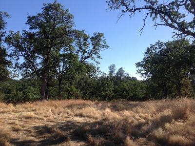 Palo Cedro Residential Lots & Land For Sale: Tudor Oaks Dr. Parcel 3