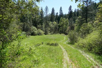 Lakehead Residential Lots & Land For Sale: 135 acres Gilman Road