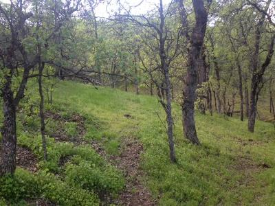 Cottonwood Residential Lots & Land For Sale: Lot 15 Saddleback Ridge Loop