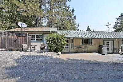 Lakehead Single Family Home For Sale: 20450 Lakeview Dr