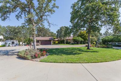 Palo Cedro Single Family Home For Sale: 21787 Charolais Way