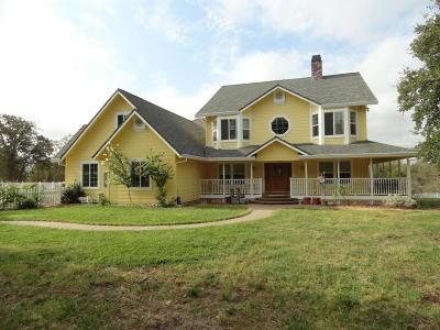 Redding Single Family Home For Sale: 13100 Padani Dr