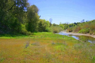 Anderson Residential Lots & Land For Sale: Oak Bottom Rd