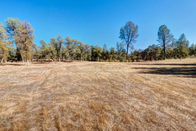 Redding Single Family Home For Sale: Confidential