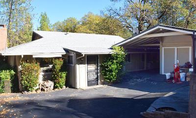 Lakehead Single Family Home For Sale: 19817 Oak Knoll Dr