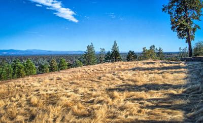 Shasta Lake Residential Lots & Land For Sale: 4460 Risstay Way