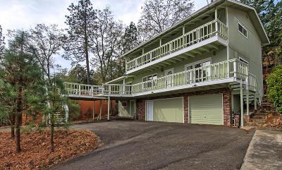 Lakehead Single Family Home For Sale: 19620 Daisy Lane