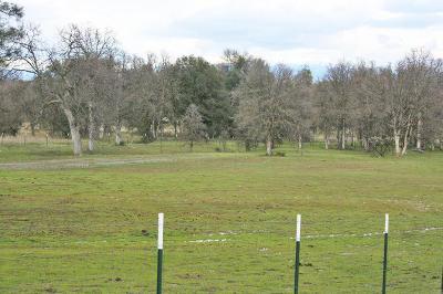 Palo Cedro Residential Lots & Land For Sale: 9715 Buckshot Ln