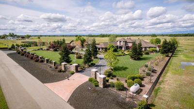 Palo Cedro Single Family Home For Sale: 7180 Del Rico Ct