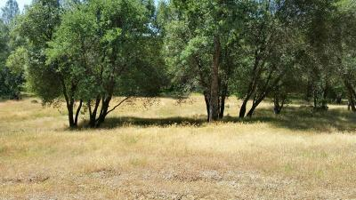 Red Bluff Residential Lots & Land For Sale: Westridge Dr