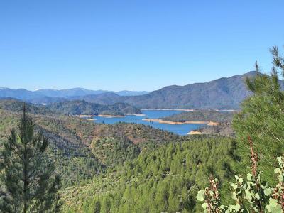 Bella Vista Residential Lots & Land For Sale: 38 acres Solid Rock
