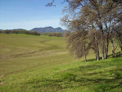 Bella Vista Single Family Home For Sale: 12952 Blue Sky Rd