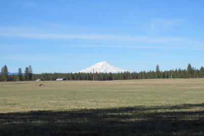 Shast County, Shasta County, Shasta. County Single Family Home For Sale:  26744