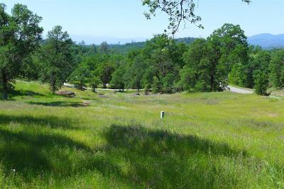 Residential Lots & Land For Sale: 6.4 Acres Deck Way