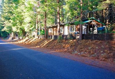 Shingletown Single Family Home For Sale: 8031 Brokeoff Meadows Rd