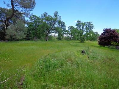 Shasta Lake Residential Lots & Land For Sale: 2005 Elizabeth St
