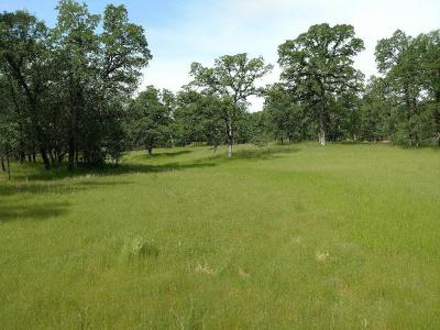Redding Residential Lots & Land For Sale: Twin Lakes Ln.