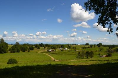 Igo Residential Lots & Land For Sale: Zogg Mine Rd