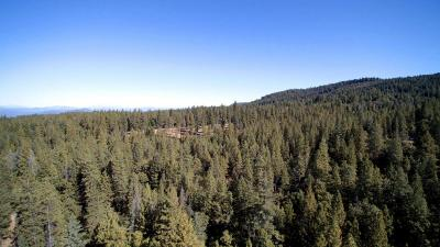 Oak Run Residential Lots & Land For Sale: 5.2 Acres Smith Logging Road