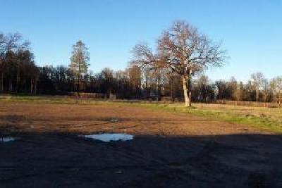 Redding Residential Lots & Land For Sale: 7153 Old 44 Dr