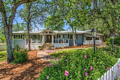 Redding Single Family Home For Sale: 9064 Simmons Rd