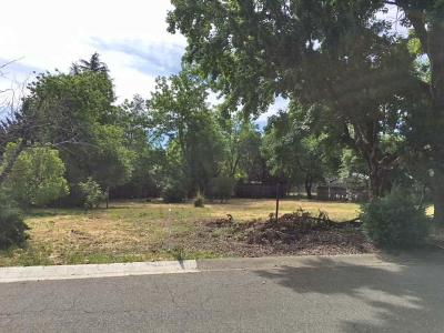 Redding Residential Lots & Land For Sale: 2985 Dove St