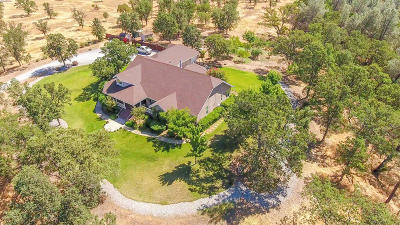 Palo Cedro Single Family Home For Sale: 8589 Silver Bridge Rd
