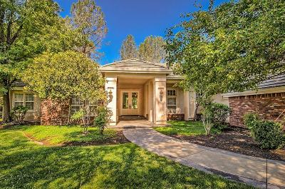 Redding Single Family Home For Sale: 13330 Tierra Heights Rd
