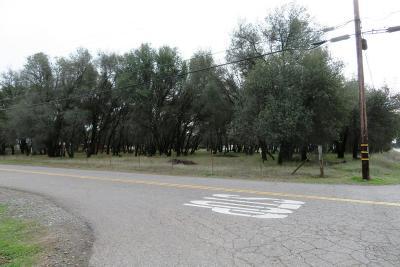 Cottonwood Residential Lots & Land For Sale: SE Corner Of 1st & Charles