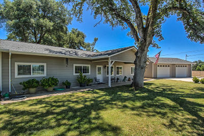 Palo Cedro Single Family Home For Sale: 22287 Lancelot Ln