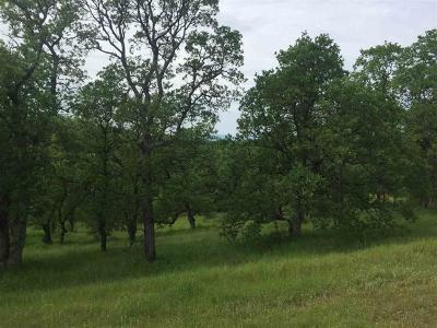 Red Bluff Residential Lots & Land For Sale: 4.90 ac Ranchero Dr