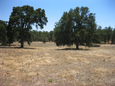 Cottonwood Residential Lots & Land For Sale: Two Feathers Rd.
