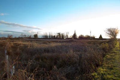Residential Lots & Land For Sale: Webb Rd.