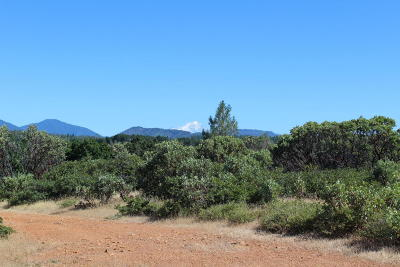 Bella Vista Residential Lots & Land For Sale: 40 Acres Off Seaman Gulch Rd