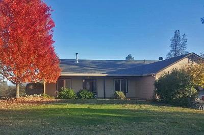 Anderson Single Family Home For Sale: 16752 Lassen Ave