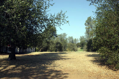 Redding Residential Lots & Land For Sale: 12880 Old Oregon Trl