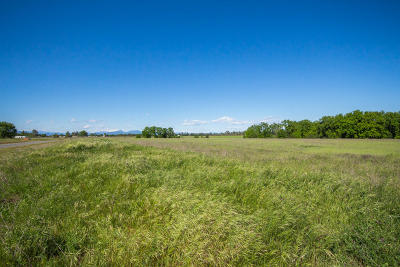 Anderson Residential Lots & Land For Sale: Lot 1 Scenic Oak Ct.