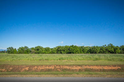 Anderson Residential Lots & Land For Sale: Lot 2 Scenic Oak Ct.