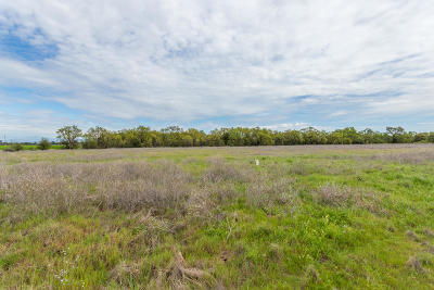 Anderson Residential Lots & Land For Sale: Lot 3 Scenic Oak Ct